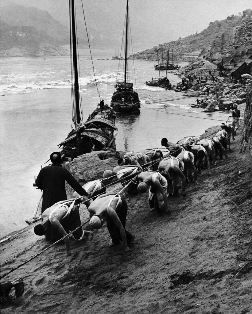Yangtze River, Sichuan, China 2 rows of Chinese trackers, harnessed & bowed, plodding along bank of Yangtze river towing a junk (type of Chinese boat) slowly up river, being instructed by headman (L), w. other junks & people distant in bkgrd. March 1946